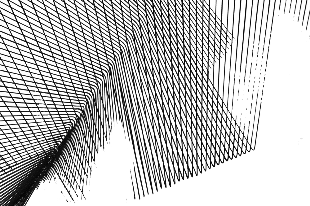 Miguel_Drawing3.jpg
