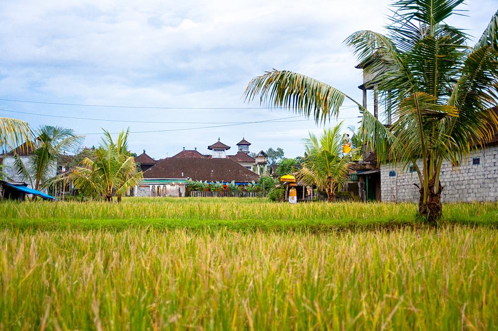 Resort_10.jpg