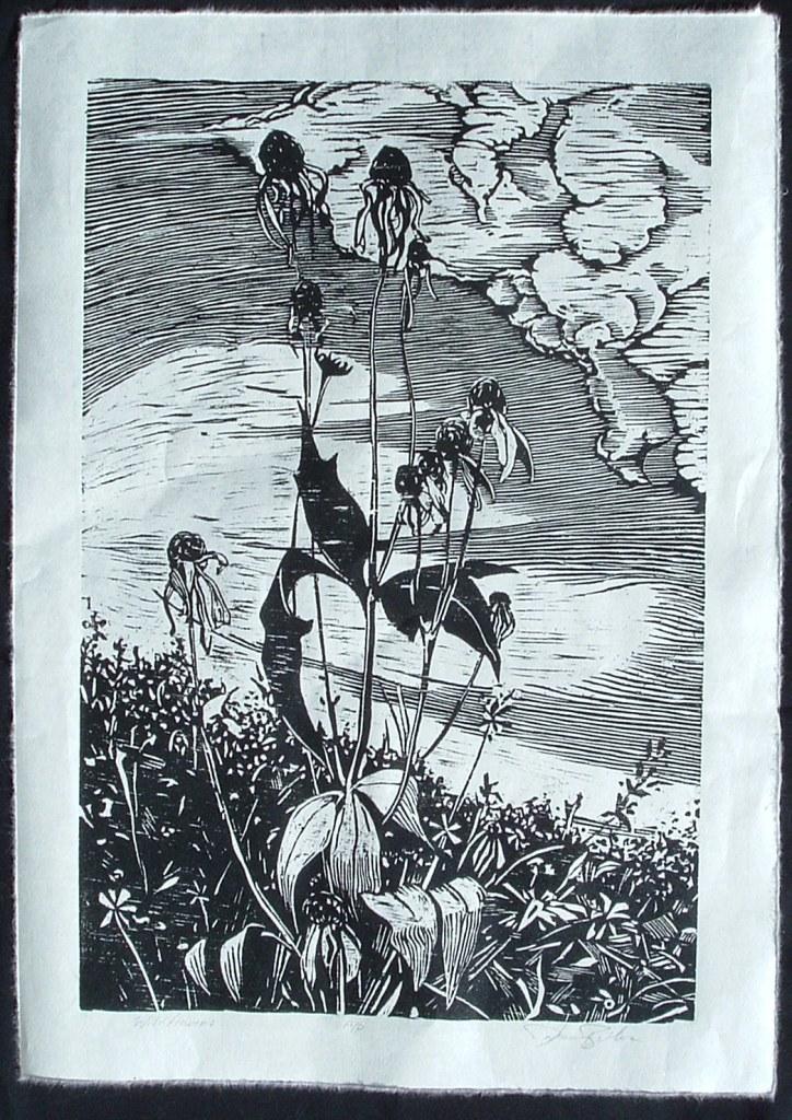 1 wildflowers 18X12 woodcut copy 2.JPG