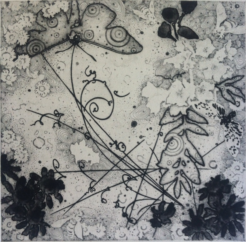 "Joshua Butler,  Hakomi 5: Bees and Moths visit the Hadron Collider , 12""X12"", Intaglio"