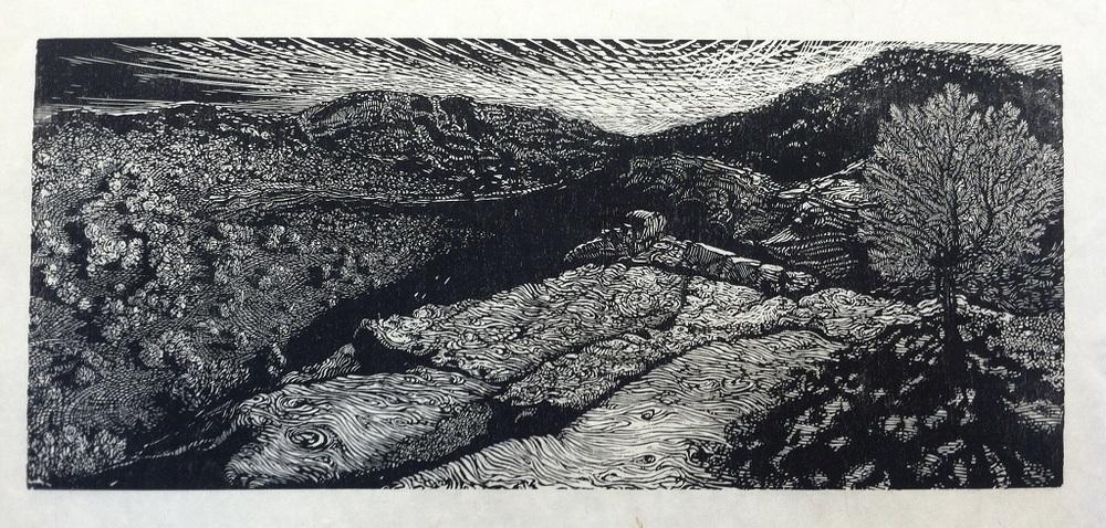 Joshua Butler 16, Sunrise over Rough Canyon.JPG