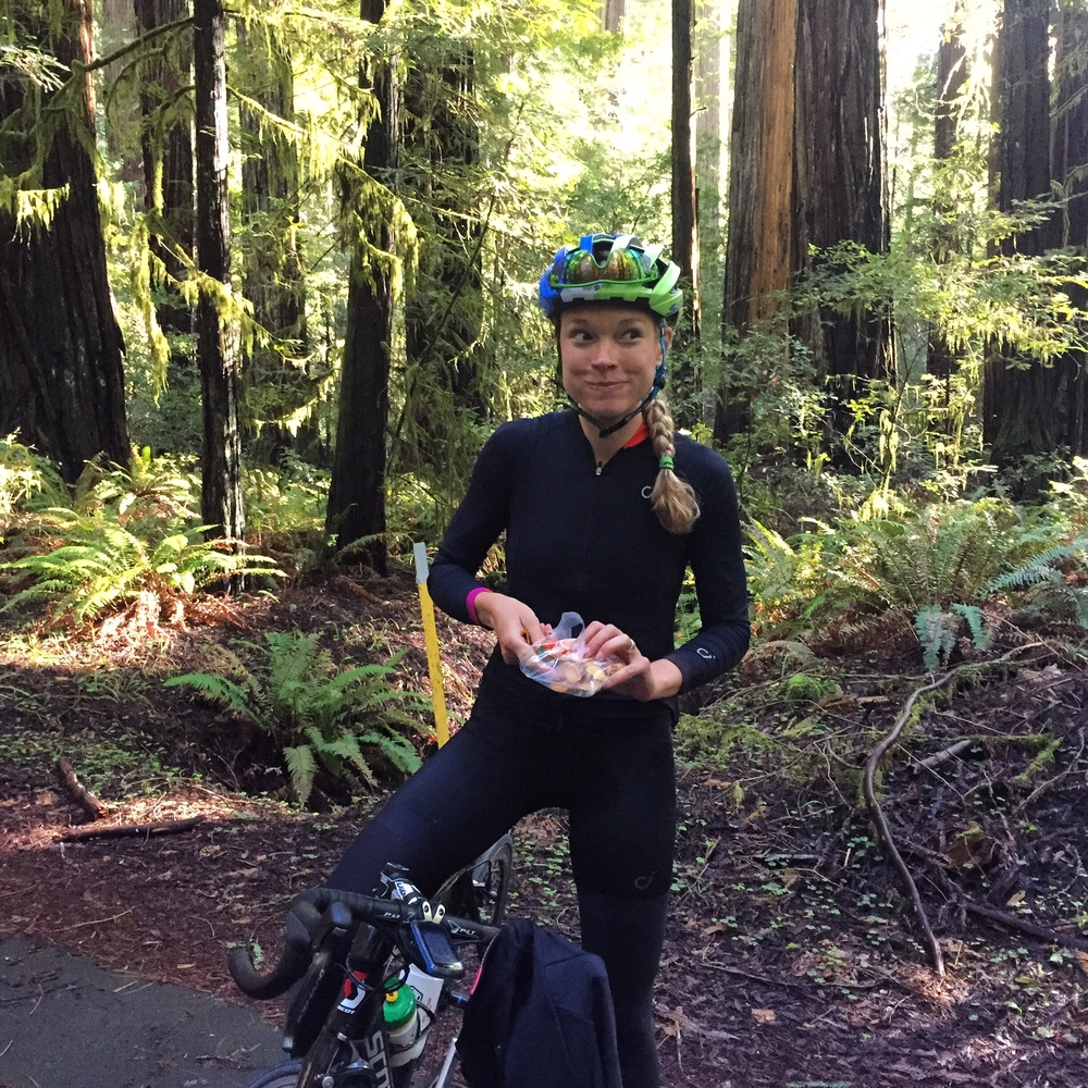 Dried mango in the Redwoods, yum!