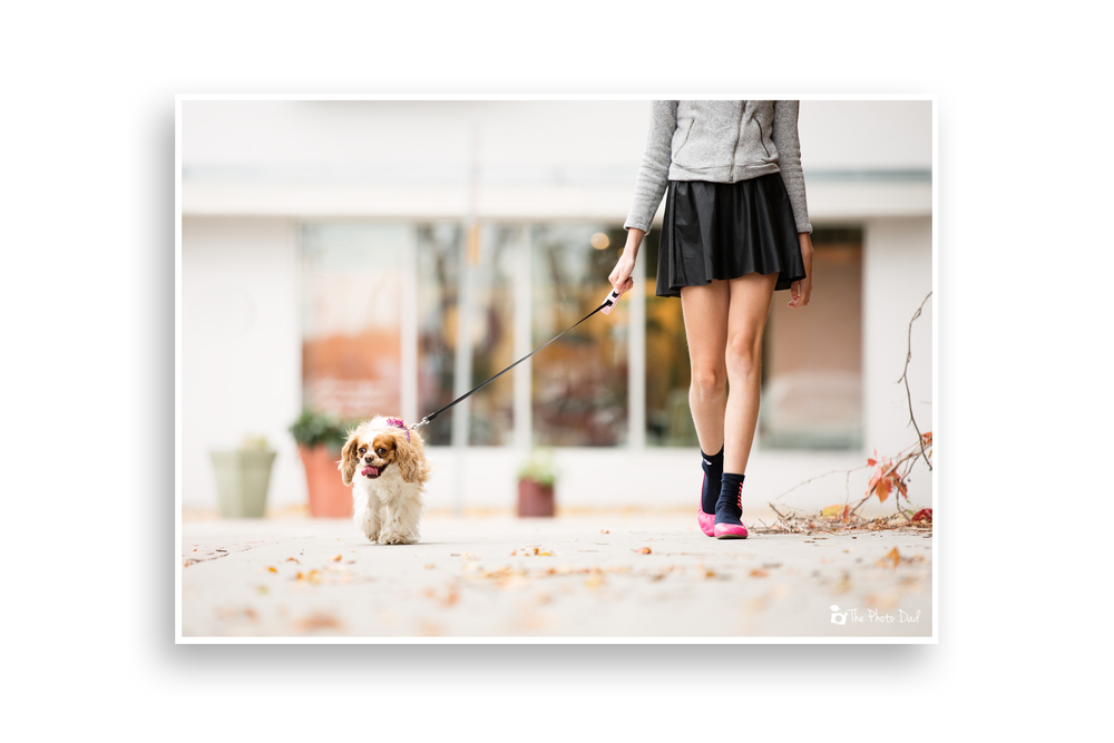 Dog and Girl Taking a Stroll - Fargo, ND Photographer