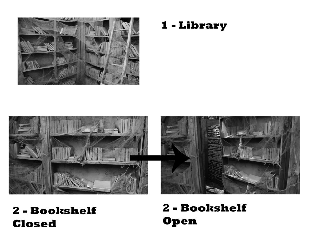 THE REEL OF HORROR - LIBRARY.jpg