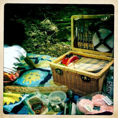Picnic for lunch
