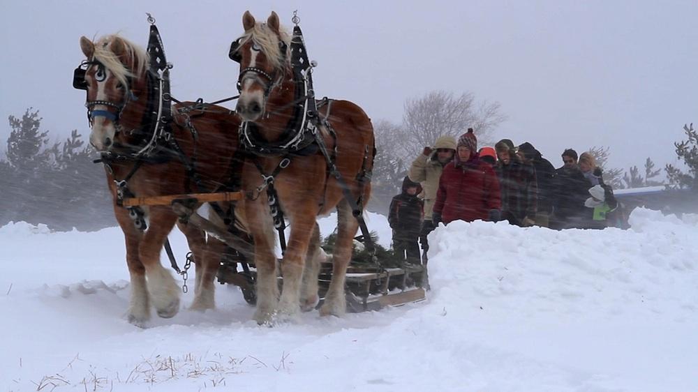 11+AWFW+snowy+procession+web.jpg