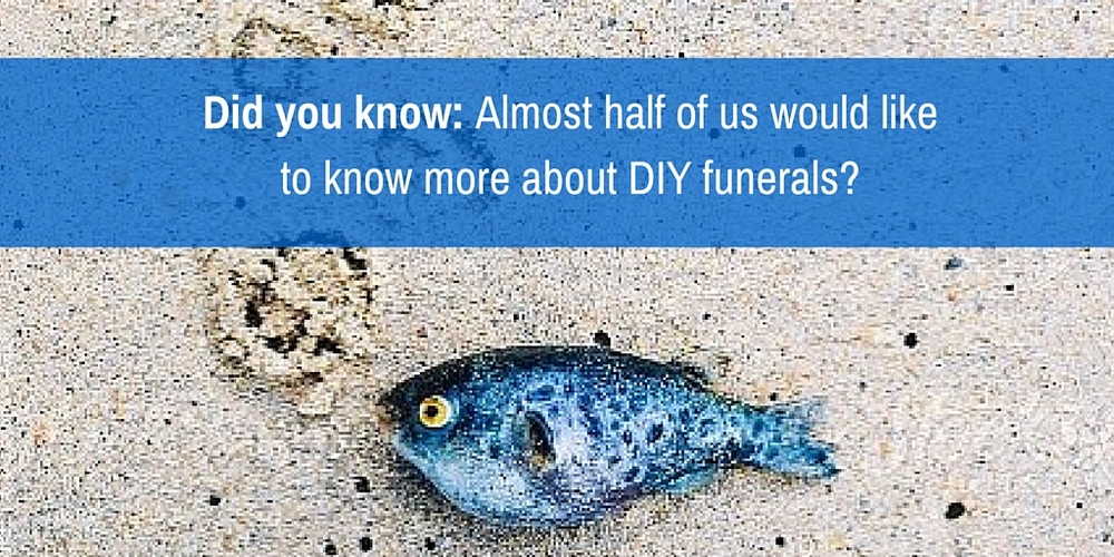 Blog archives the groundswell project fact number 7 almost half of us would like to know more about diy funerals solutioingenieria Images