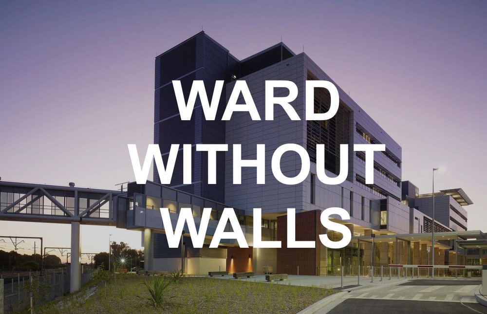 What would it take to reduce the barriers that sit in a hospital ward? - A community well-being approach to dying in South-West Sydney