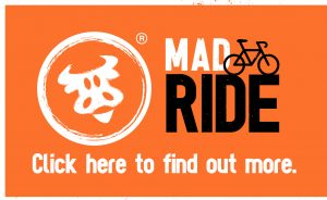 MadCowRide-click-here-300x184.jpg