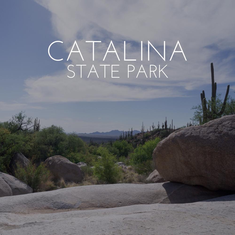 CatalinaStatePark(64).jpg
