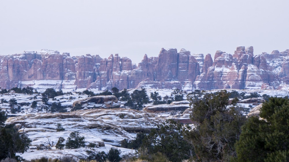 Needles Canyonlands National Park