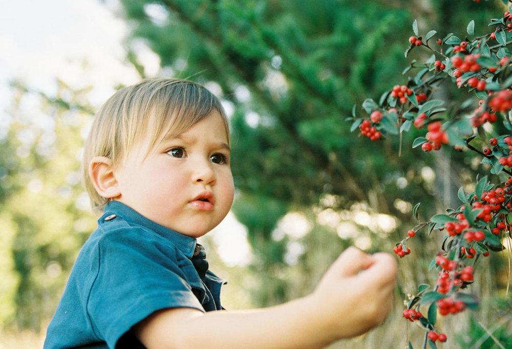 kidsportfolio91.jpg