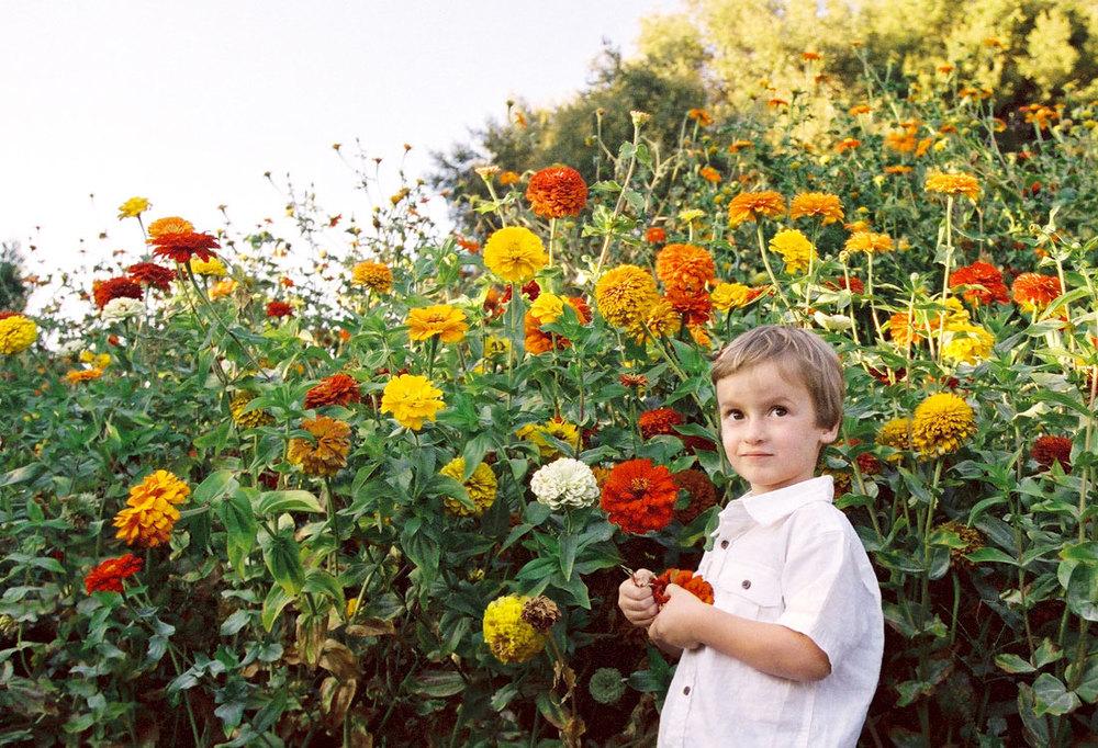 kidsportfolio156.jpg