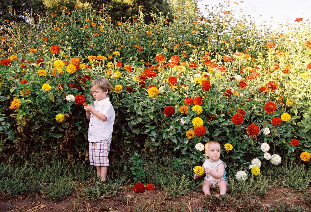 kidsportfolio155.jpg
