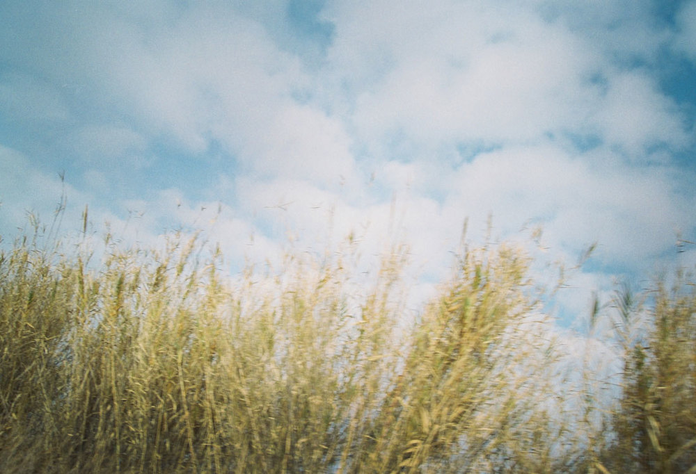landscapesportfolio48.jpg
