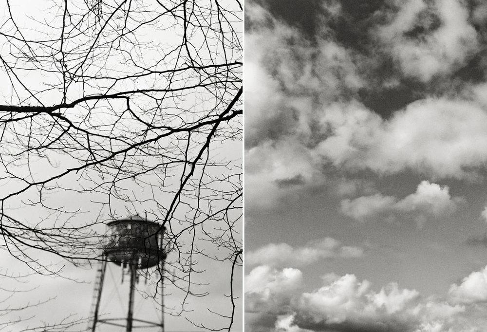 landscapesportfolio61.jpg