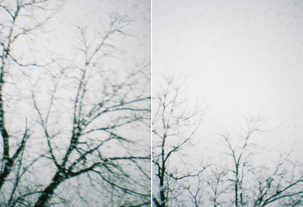 landscapesportfolio70.jpg