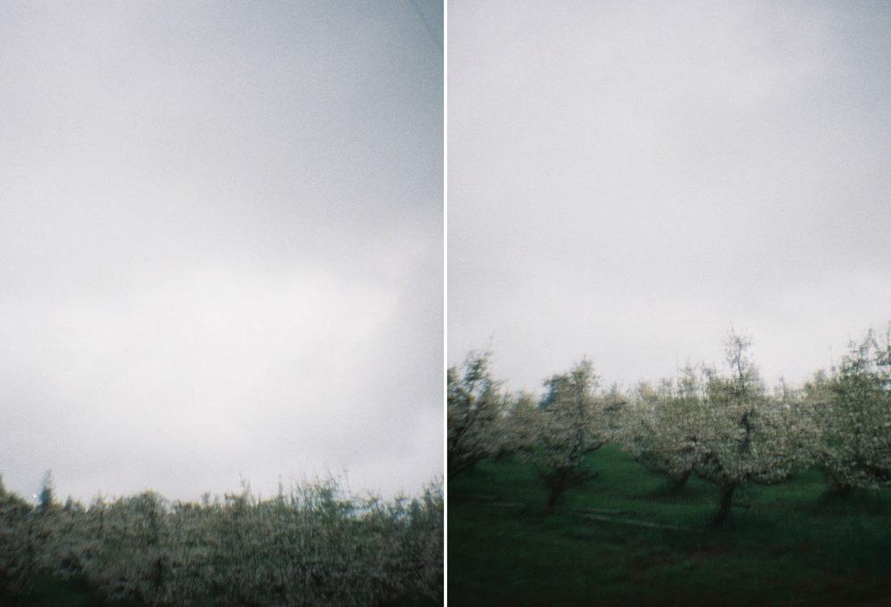 landscapesportfolio71.jpg