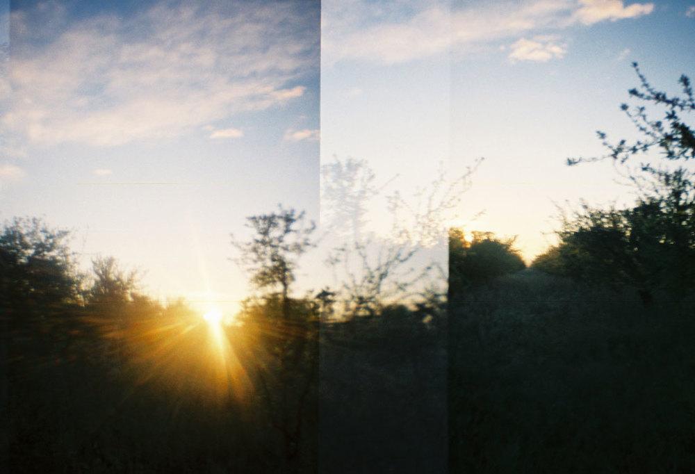 landscapesportfolio76.jpg