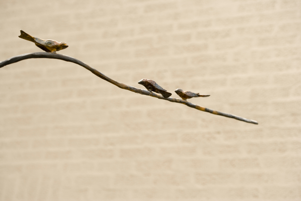 Three Birds on a Branch