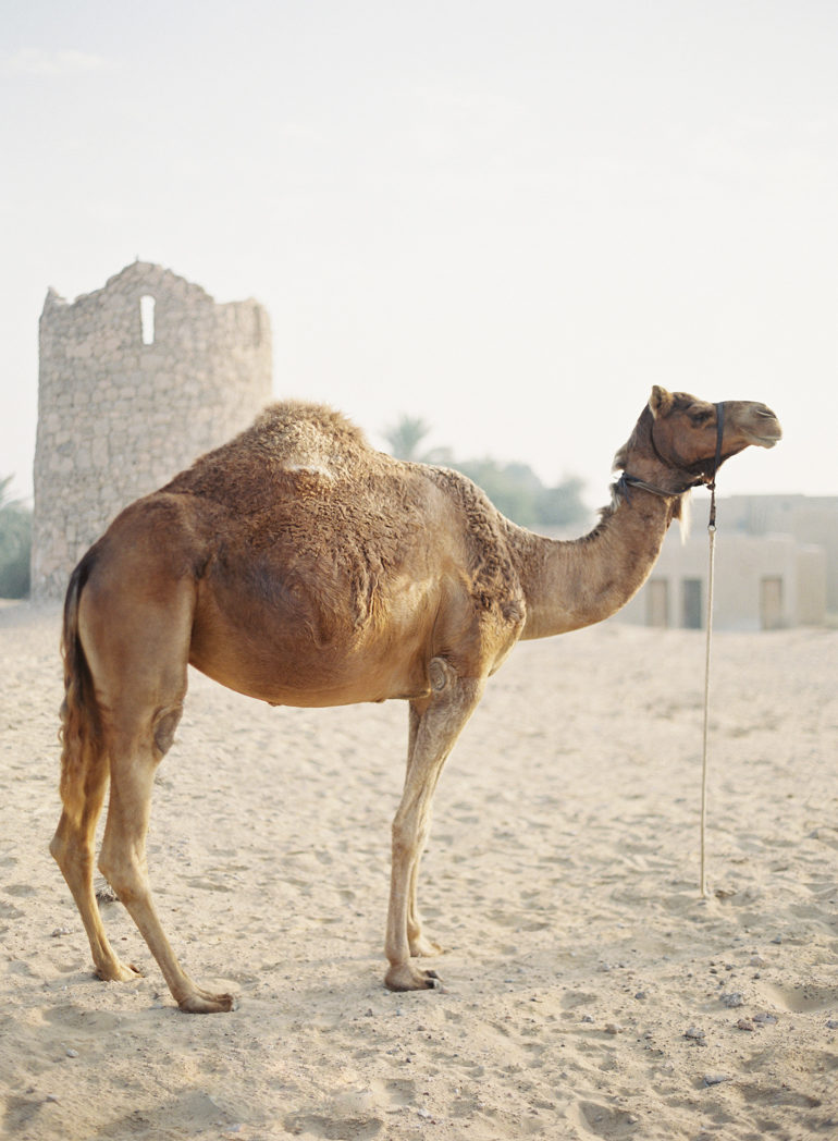 Dubai Desert Bridal | Dubai Destination Fine Art Wedding Photographer |