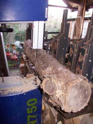 The thing in the garage - need some wood?