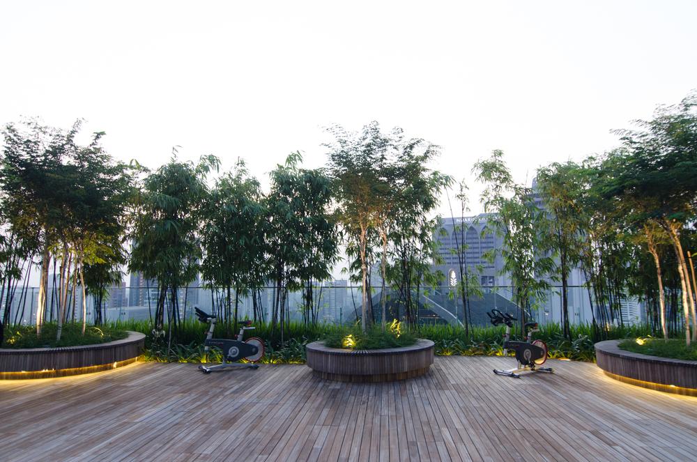Bamboo Sky Terrace