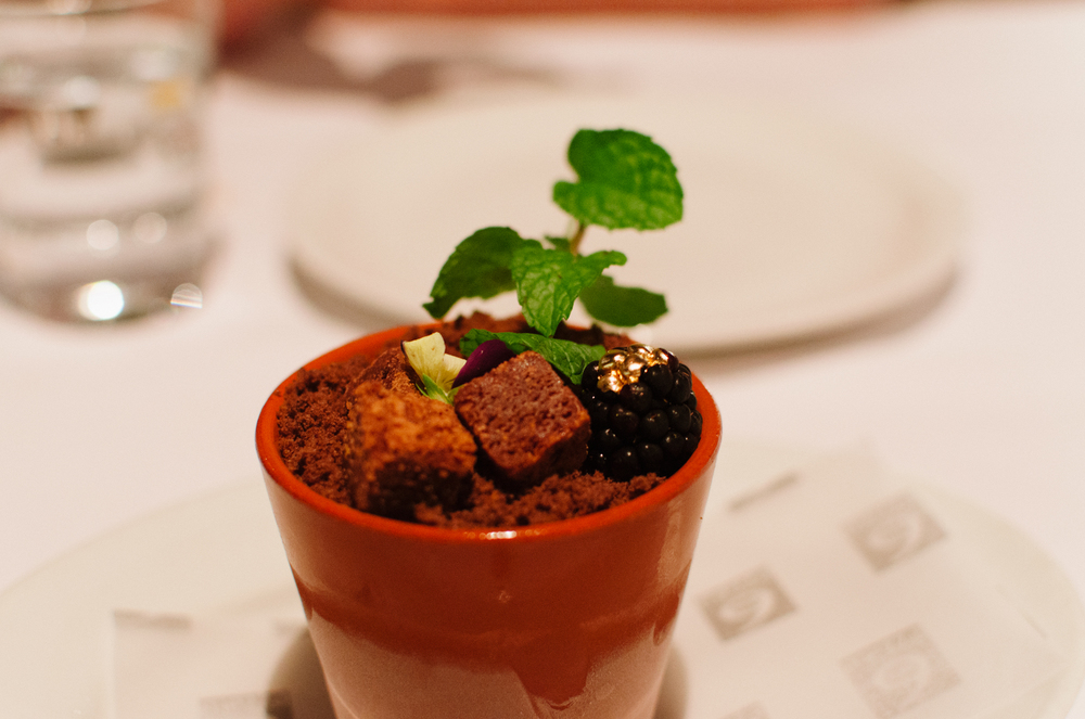 Flower Pot • Caramel Sea Salt Ice-cream • Chocolate Soil • Mint Leaves • Flowers • Berries