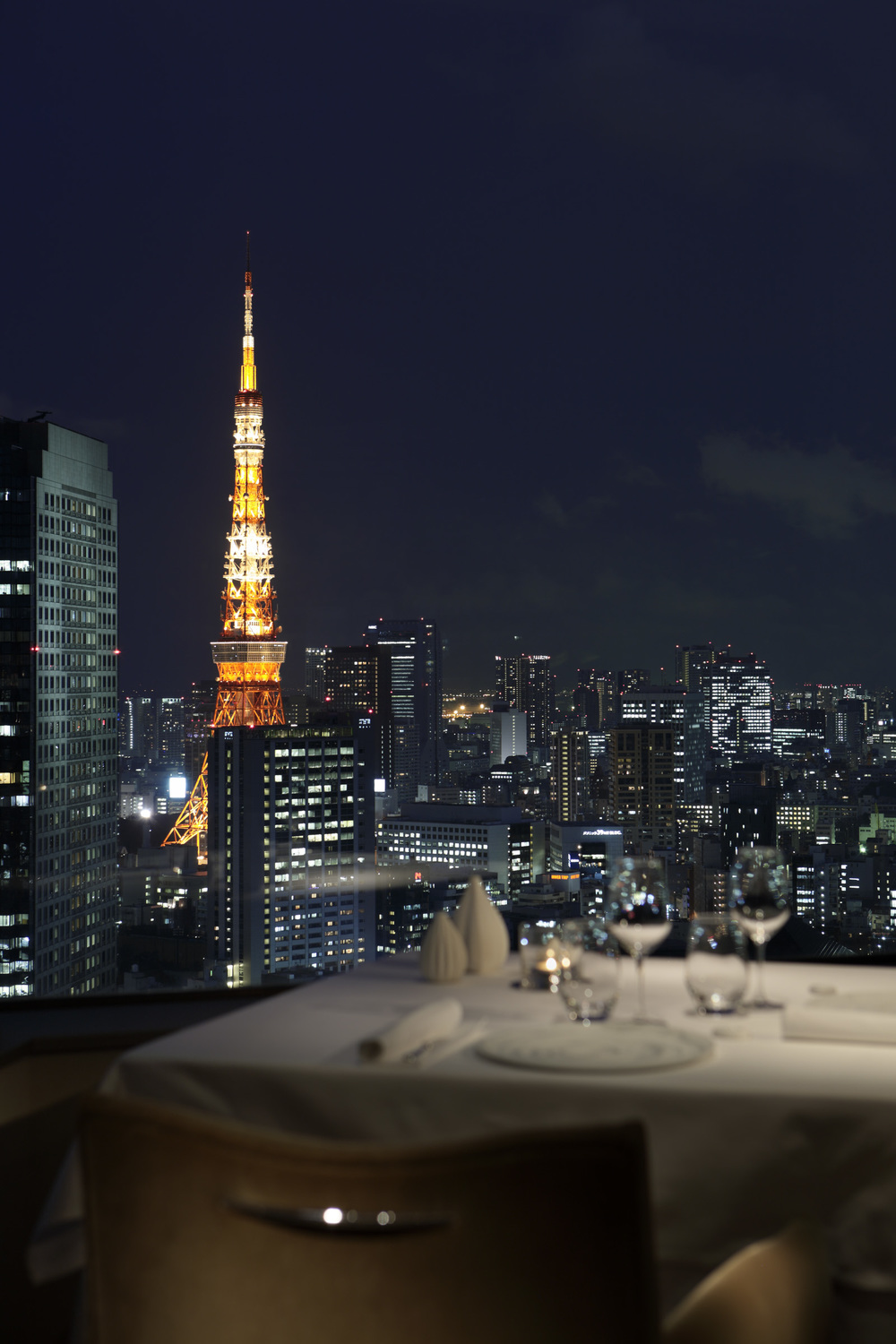 ANAInterContinentalTokyo_PG_view from restaurant.jpg