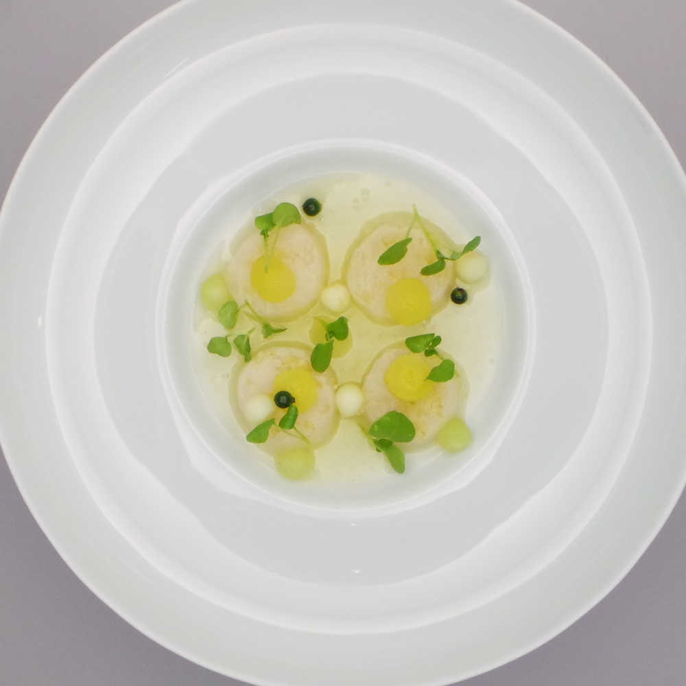 Scallop, Elderflower & Green Melon.jpg