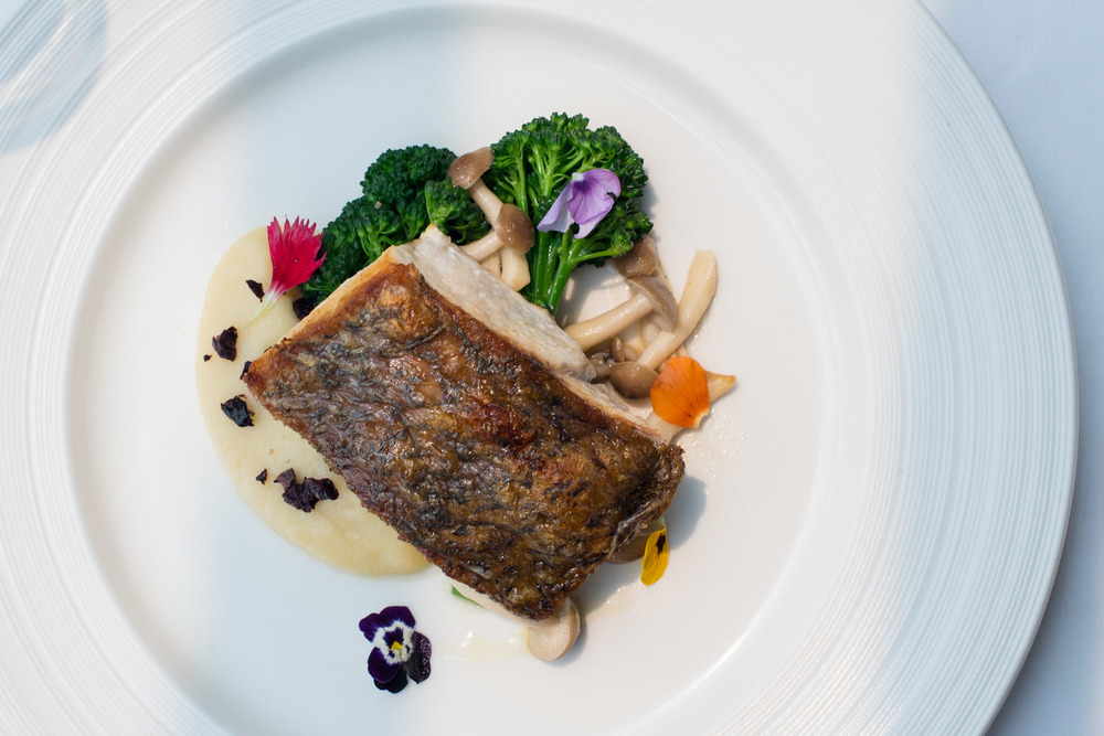 Pan-fried Seabass, Broccollini, Shimeji, Mash, Parsley, Black Olive Pool Grill - Singapore Marriott Tang Plaza Hotel