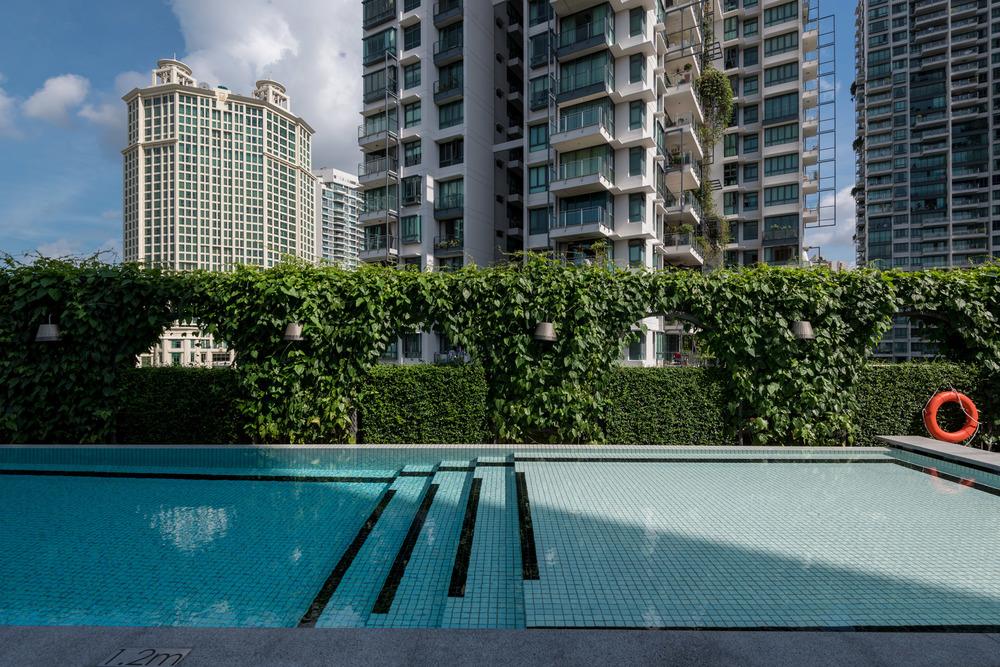 Swimming Pool M Social Singapore