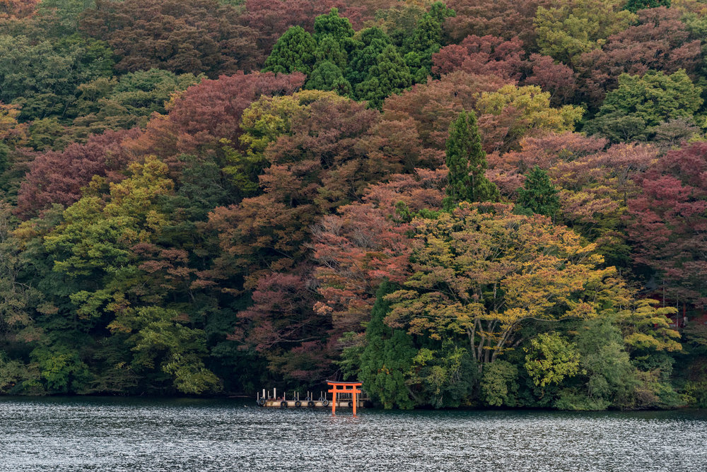 Torii Gate on Lake Ashi Travel Guide for Day-trip to Hakone from Tokyo