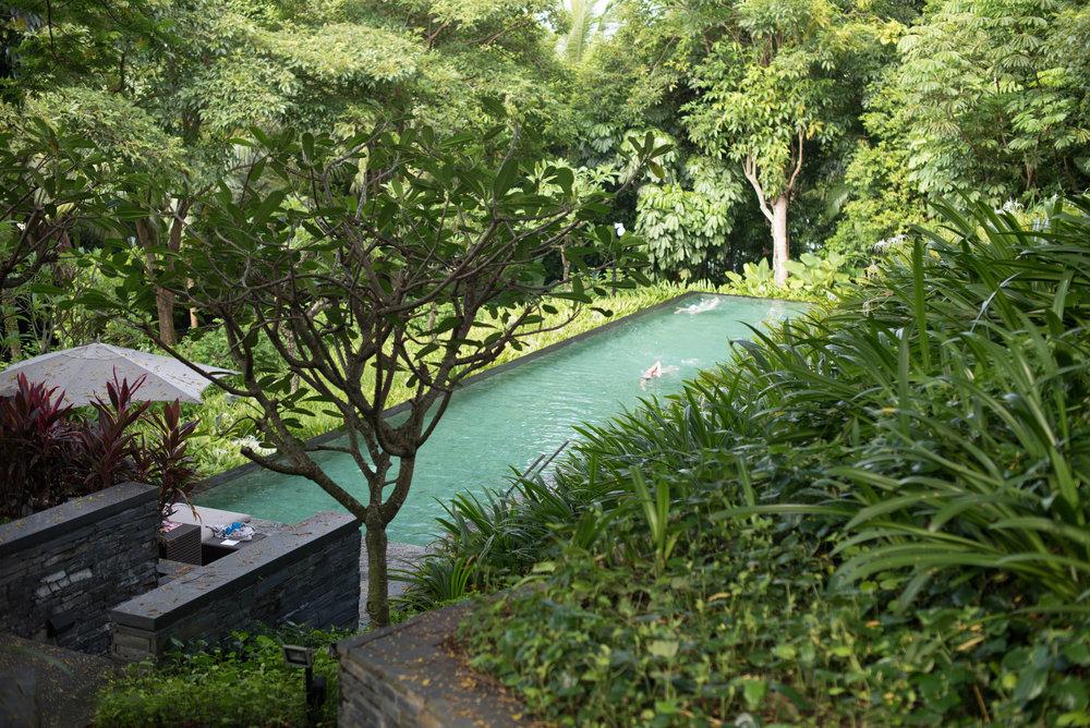 Lap Pool  Capella Singapore