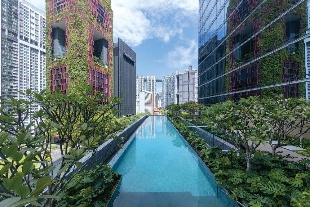 Swimming Pool | Photo Credit:Sofitel Singapore City Centre