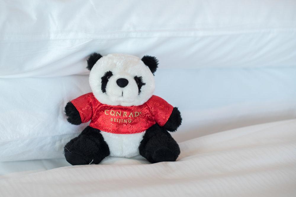 Conrad Beijing Panda Bear  Executive Suite - Conrad Beijing
