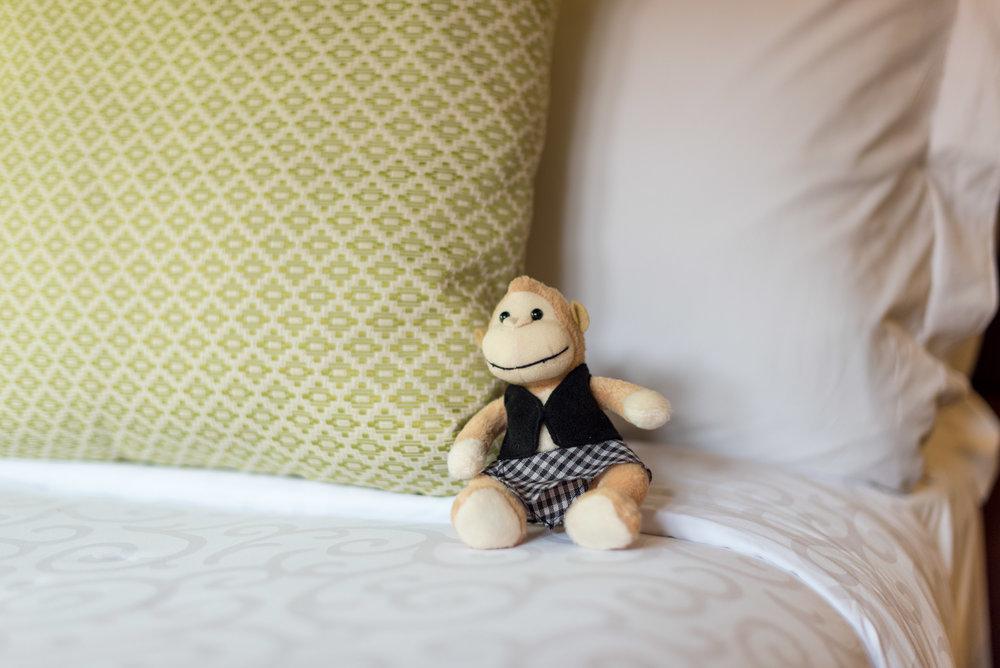 Conrad Bali 'Teddy Bear' Monkey  Pool Villa - Conrad Bali