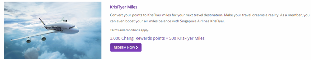 Photo Credit: Changi Rewards