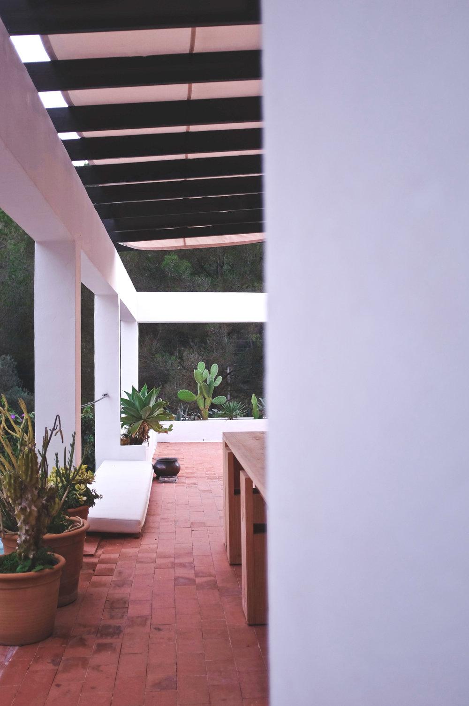 ibiza home cactus