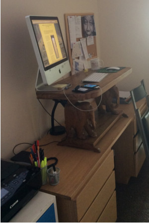 picture of my home made standing desk