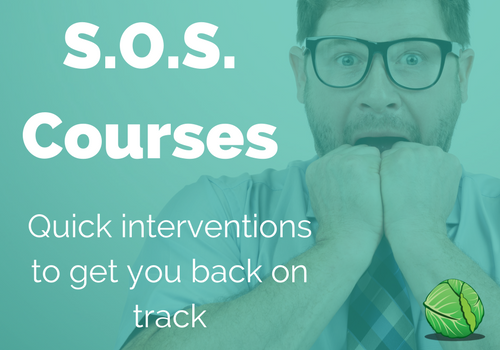 small, quick courses and videos to help you get back on track wit your wellbeing