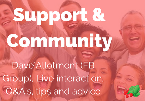 a community to support each other in getting more out of life
