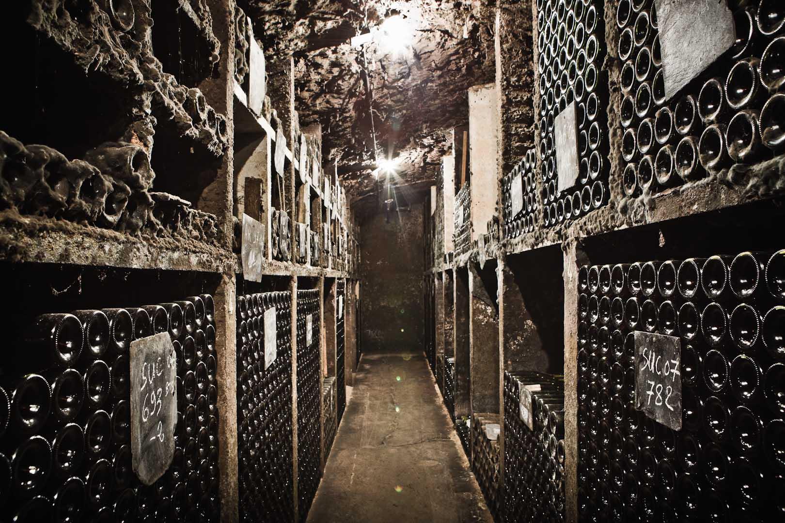 078_cellar__mg_9336.jpg