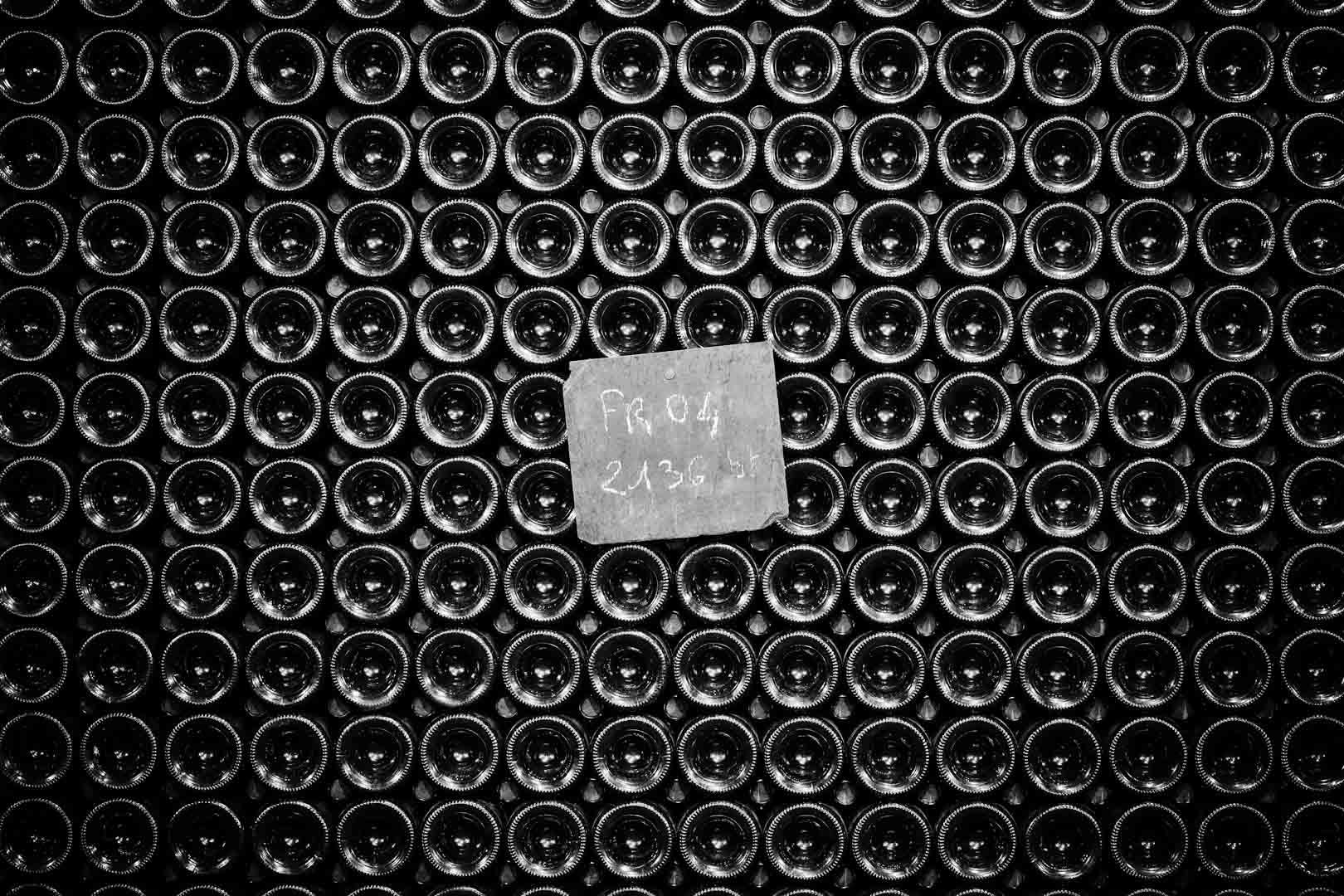 088_cellar__mg_9539.jpg