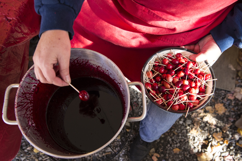 Candied Cranberries ... does anything sound more delicious? Image courtesy of Explorer's Edge