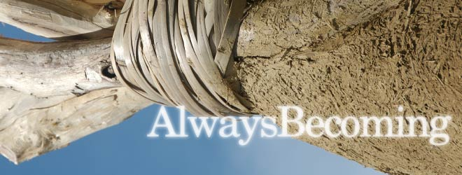 AB_blogspot_bannerB660px.jpg