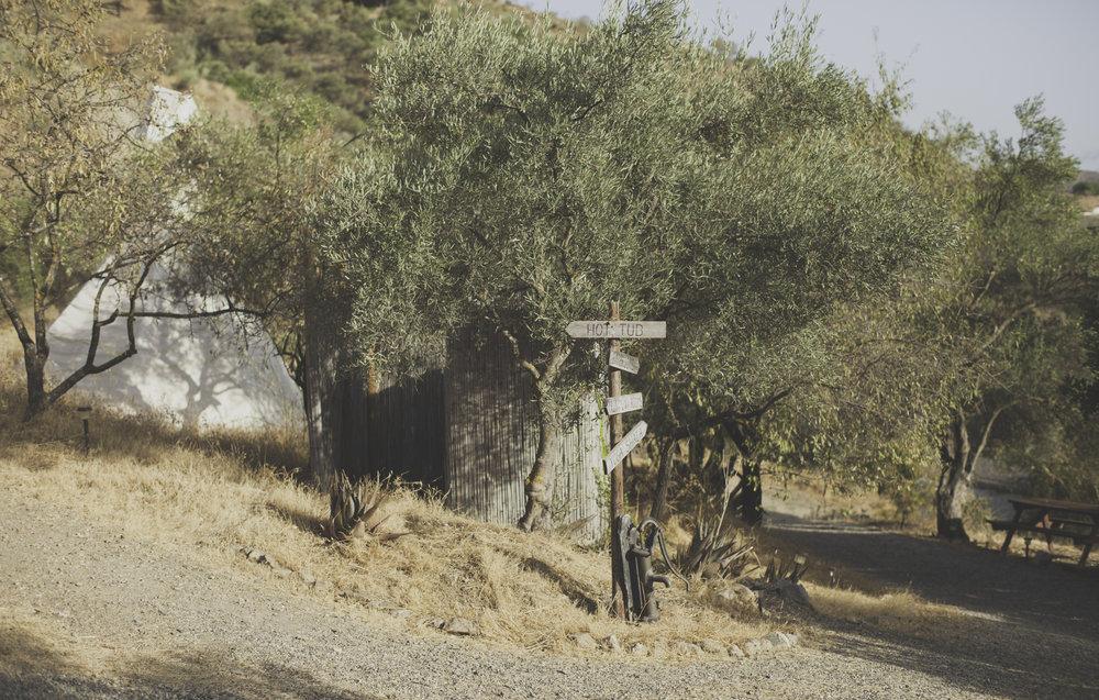 ValleDeVida web-11.jpg