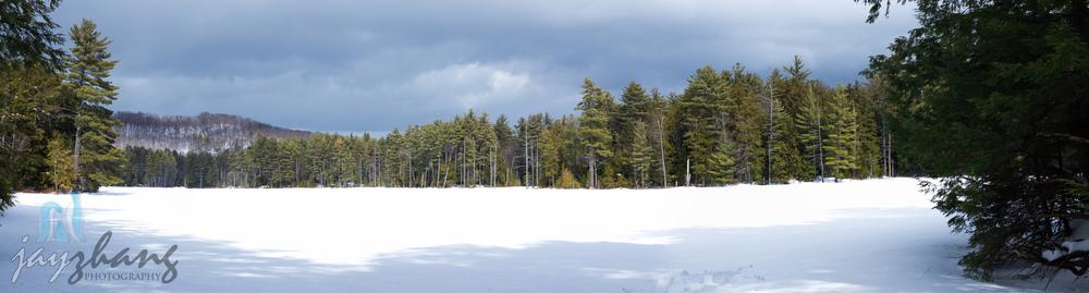 Dippikill Landscape-1.jpg