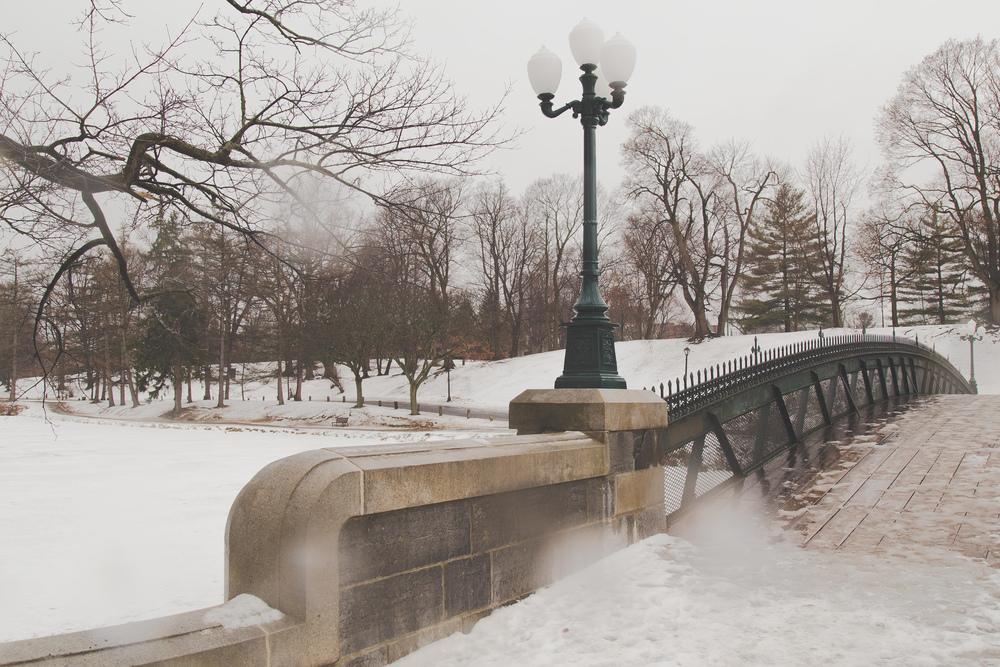 Day 25 - Bridge over Snow