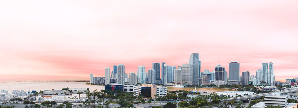 Day 56 - Miami Morning